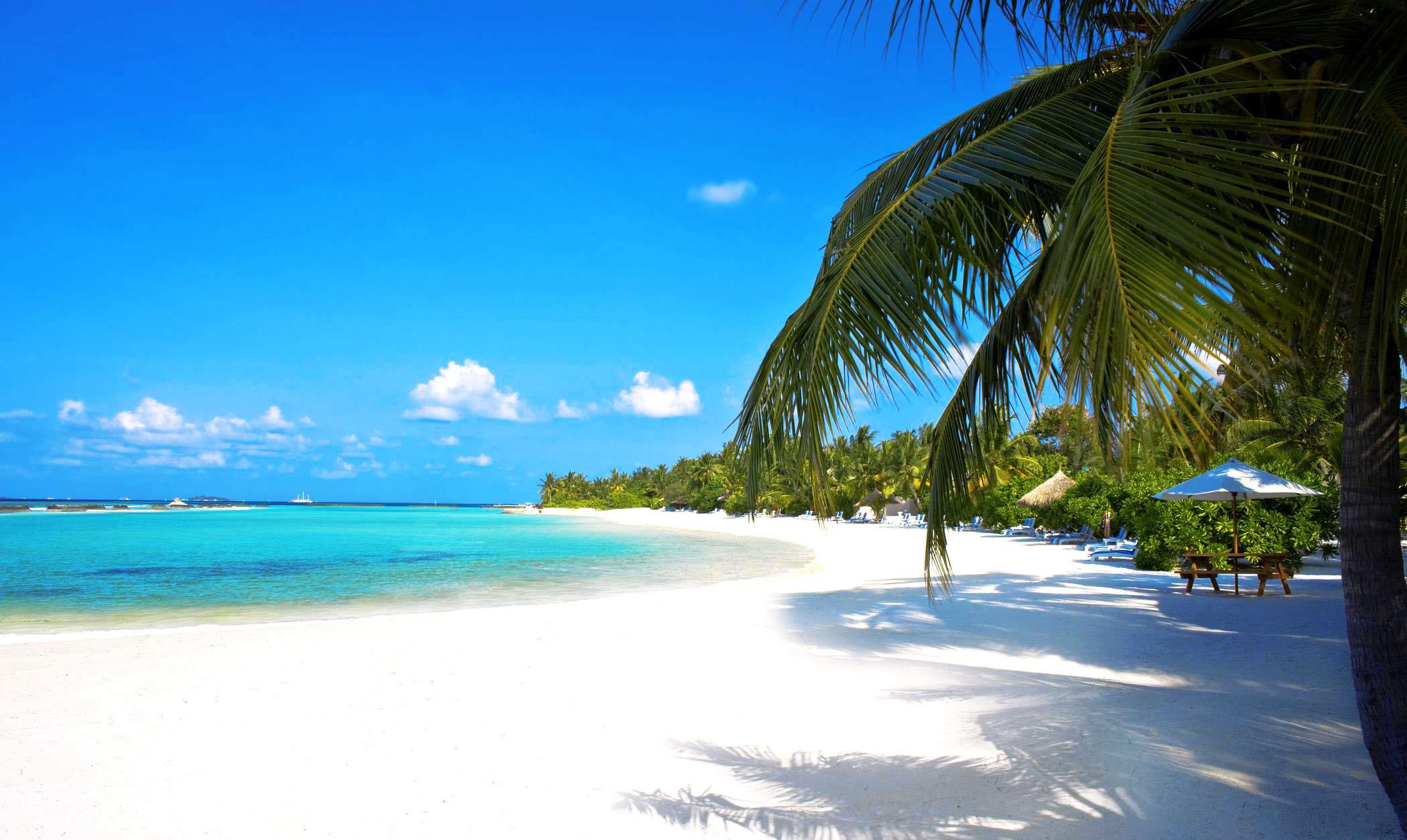 fond-ecran-hd-paysage-plage-tropicale-sable-blanc-palmier-mer-turquoise-wallpaper-beach-picture-image-2.jpg